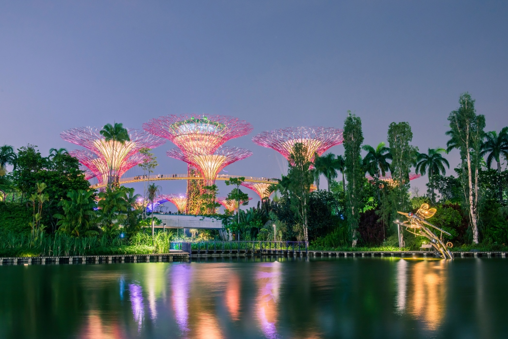 The Supertrees at Gardens by the Bay make up Singapore's iconic and evolving skyline.