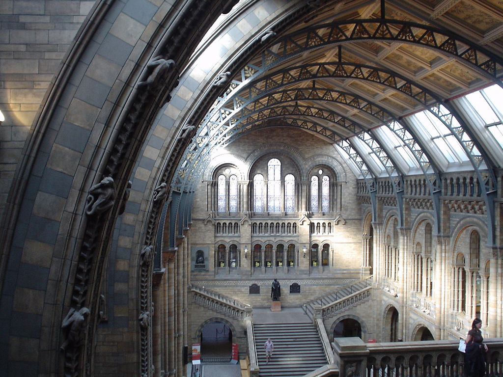 The interior of the Natural History Museum